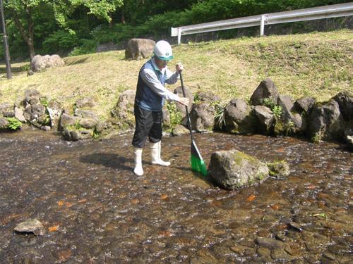 川の中のお掃除