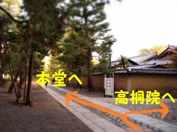 本堂へ と 高桐院へ