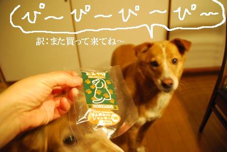 omiyage_0609.jpg