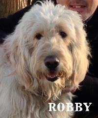 robby_0040.jpg