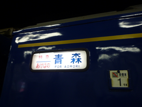 P1250528(1).jpg