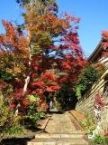 2014/11/27天園〜獅子舞5