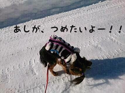 そら初めての雪6