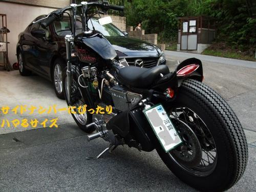 DSCF5001.jpg