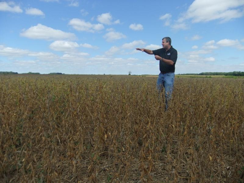 Bluegrass Farms David