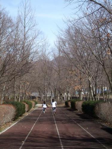 春山トレッキング6