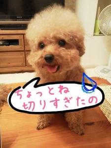 rakugaki_20130728_0006.jpg