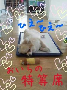 rakugaki_20130729_0002.jpg