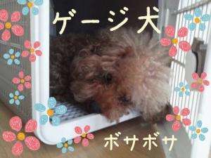 rakugaki_20130729_0005.jpg
