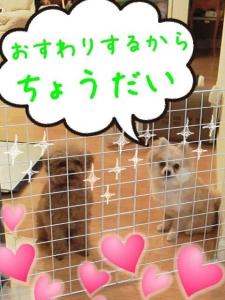 rakugaki_20130803_0004.jpg