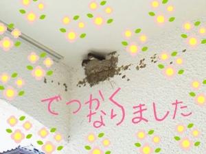 rakugaki_20130808_0002.jpg
