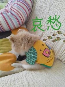 rakugaki_20130808_0003.jpg