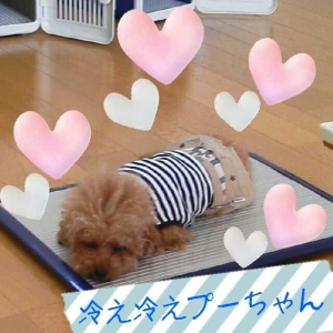 rakugaki_20130815_0003.jpg