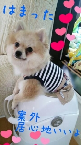 rakugaki_20130816_0003.jpg