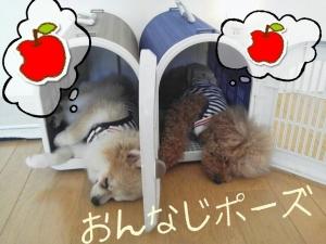 rakugaki_20130820_0001.jpg