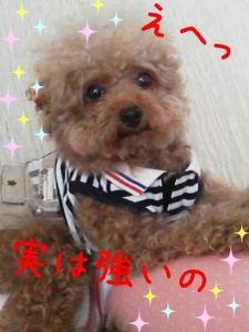 rakugaki_20130822_0001.jpg