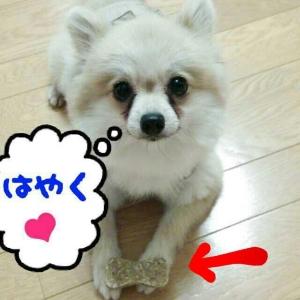 rakugaki_20130909_0009.jpg