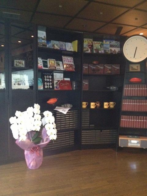 rumah cacao shelf