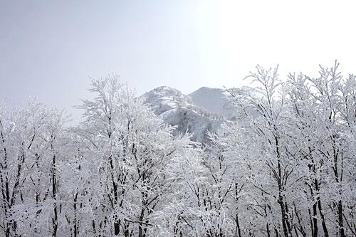 130217_10.jpg