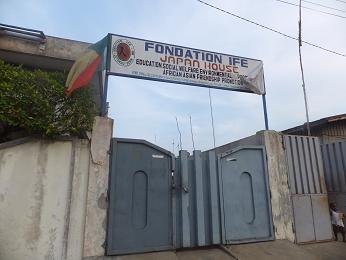 IFEの入り口