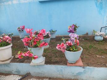 教会の前にある花