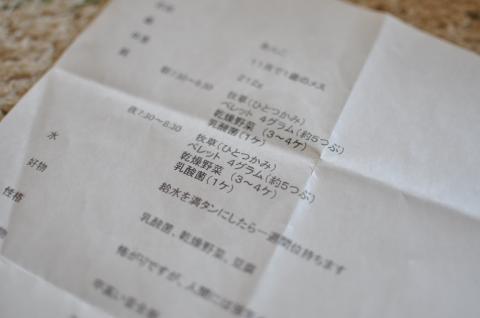 20121019_2.jpg