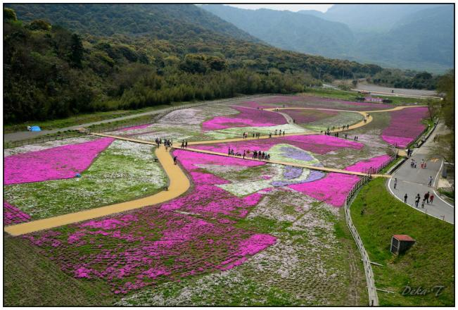 2012年4月15日しまばら芝桜公園、霊丘神社 (3)
