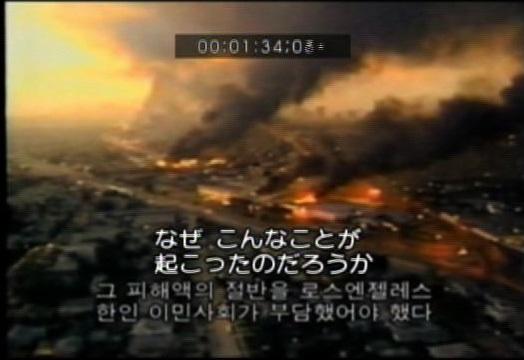 (映画『ロス暴動の真実―コリアタウンはなぜ襲われたか―』2008年)