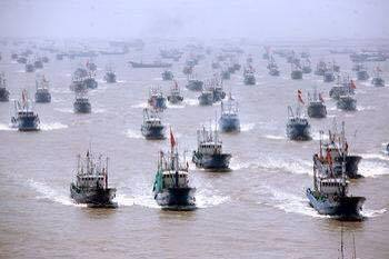 中国のサンゴ密漁で小笠原の海底が白い砂漠に…村議「政府がもっと早く動いていればこんな事にならなかった、みんな怒っている」