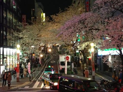 1満開の夜桜