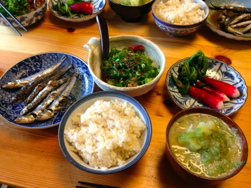 1エゴマの実納豆定食