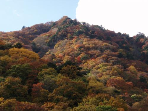 misayama2012