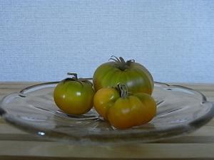 最後のグリーントマト