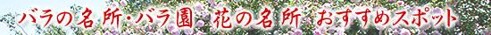 花の名所・バラ おすすめイベント情報
