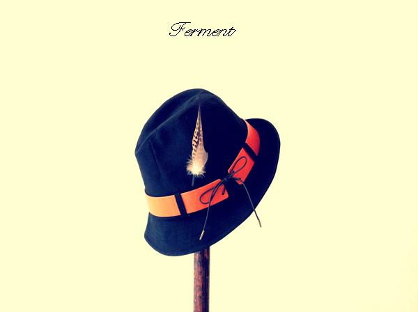 ferment2.jpg