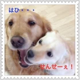 2_20120609093833.jpg