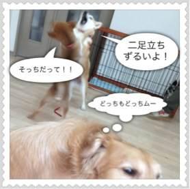 2o_20120512094502.jpg