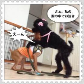2o_20120704094717.jpg