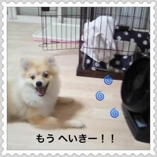 2o_20120808094320.jpg