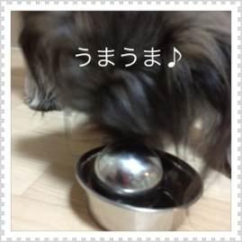 2o_20120818103456.jpg