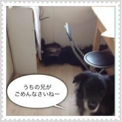 3_20120414192338.jpg