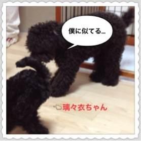 3_20120711100946.jpg