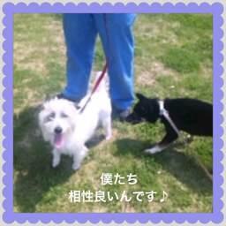 3o_20120425094620.jpg