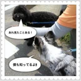 3o_20120509183553.jpg
