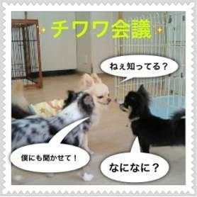 3o_20120512094501.jpg