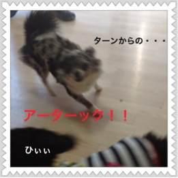 3o_20120627093204.jpg