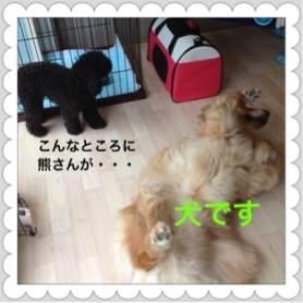 3o_20120704094716.jpg