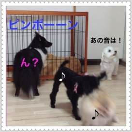 3o_20120707093954.jpg