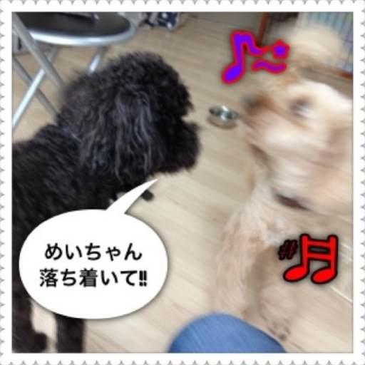 3o_20120721094025.jpg