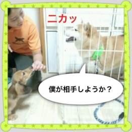 3o_20120926135320.jpg